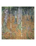 Gustav Klimt - Birch Forest, 1903 - Reprodüksiyon
