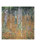 Birch Forest, 1903 Prints by Gustav Klimt
