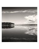 Big Pond Prints by Andrew Ren