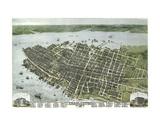 Bird's Eye View of the City of Charleston, South Carolina, 1872 Poster von C.N. Drie