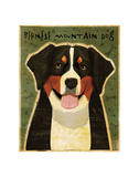 Bernese Mountain Dog Art by John W. Golden