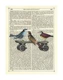 Birds on a Skateboard Affiche par Marion Mcconaghie