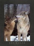 Interludio boreale, Canada Poster di Art Wolfe