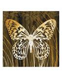Butterflies & Leaves II Prints by Erin Clark