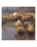 Bull Moose Poster by Greg Alexander
