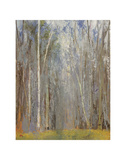 Birch Woods Prints by Elissa Gore