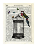 Bird Cage and Parrot Poster van Marion Mcconaghie