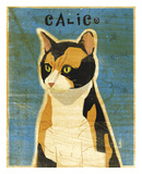 Calico Prints by John W. Golden