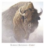 Chief (detail) Sztuka autor Robert Bateman