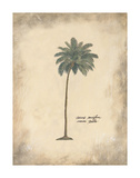 Cocoa Palm Posters by Annabel Hewitt