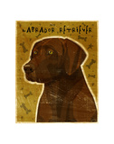 Chocolate Lab (NEW) Prints by John W. Golden