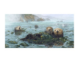 Carmel Coast Otters Posters by John Dawson