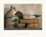 Riesentafelente und Brautente Kunstdrucke von Kathleen Cope Ruoss