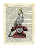 Cocatoo on Telephone Prints by Marion Mcconaghie