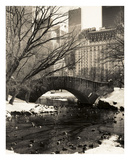 Central Park Bridges 4 Prints by Chris Bliss