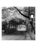 Central Park Pergola Prints by Erin Clark