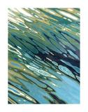 Desert Oasis Kunstdrucke von Margaret Juul