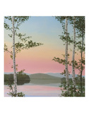 Cooper Sunset Birches Posters by Elissa Gore