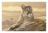 Desert Sunrise Prints by Kalon Baughan