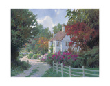 Country Lane Prints by Allan Myndzak
