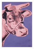 Cow, 1976 (pink & purple) Prints by Andy Warhol