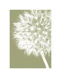 Dandelion Crop (khaki) Pósters por Jenny Kraft