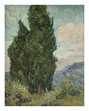 Cypresses, 1889 Affiches par Vincent van Gogh