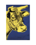 Cow, 1971 (blue & yellow) Plakater af Andy Warhol