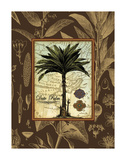 Date Palm Prints by Karl Rattner