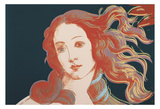 Details of Renaissance Paintings (Sandro Botticelli, Birth of Venus, 1482), 1984 Posters af Andy Warhol