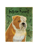 English Bulldog (tan and white) Art by John W. Golden