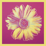 Daisy, c.1982 (fuchsia & yellow) Posters by Andy Warhol