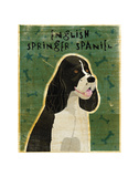 English Springer Spaniel (black and white) Posters by John W. Golden