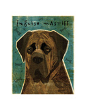 English Mastiff (Brindle) Posters by John W. Golden