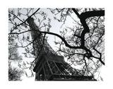 Eiffel III Kunstdrucke von Tom Artin