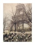 Eiffel in Springtime Posters by Dawne Polis
