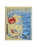 Delaware Beach Map Poster by  Zeke's Antique Signs