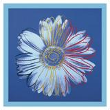Daisy, c.1982 (blue on blue) Lámina por Andy Warhol
