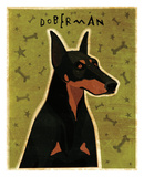Doberman Posters by John W. Golden