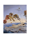Dream Caused by the Flight of a Bee... Print by Salvador Dali