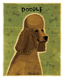 Poodle (brown) Prints by John W. Golden