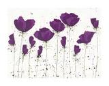 Radiant Poppies Print by  Art Marketing
