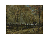 Poplars near Nuenen, 1885 Posters by Vincent van Gogh