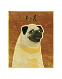 Pug Print by John W. Golden