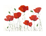 Poppies in a Row III Posters by  Art Marketing