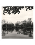Rideau River, Study 2 Prints by Andrew Ren