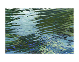 Sawgrass Lake Prints by Margaret Juul