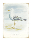 Seagull Posters af Art Marketing