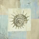 Sea Finds III Prints by Lisa Audit