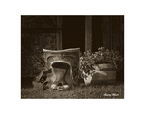 Saddle Still Life Prints by Barry Hart